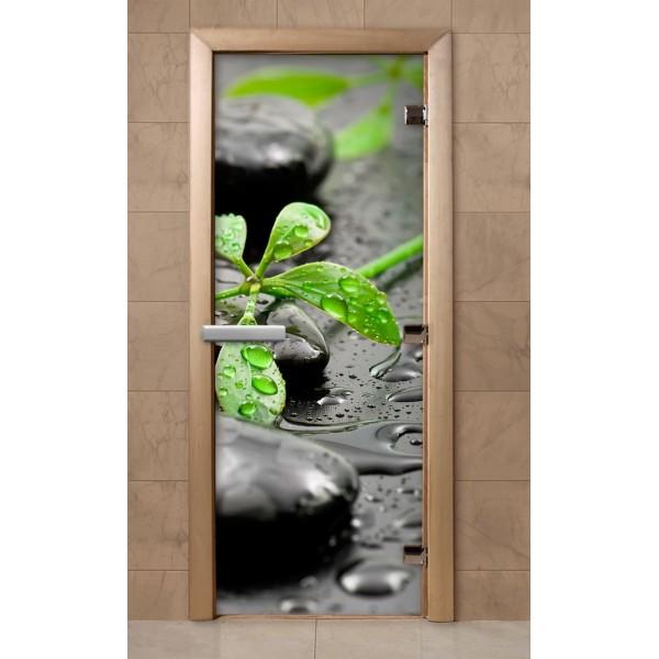 Дверь для саун с фотопечатью 700Х1900  (219)