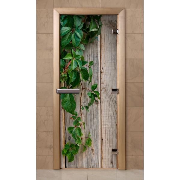Дверь для сауны с фотопечатью 700Х1900 (236)